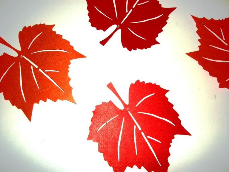 fall of 2014 008